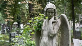 Anjo número 389 e seu significado e simbolismo