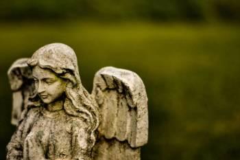 Anjo número 0202 e seu significado e simbolismo