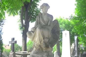 Anjo número 829 e seu significado e simbolismo