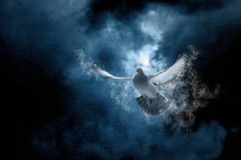 Horóscopo hoje: Previsão astrológica para 17 de novembro