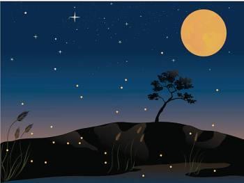 Qual é o signo do zodíaco para o zodíaco de 3 de maio?
