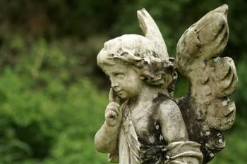 Anjo número 0055 e seu significado e simbolismo