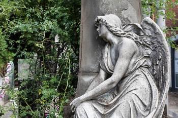 Anjo número 0088 e seu significado e simbolismo