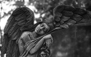Anjo número 80 e seu significado e simbolismo