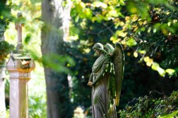 Anjo número 86 e seu significado e simbolismo