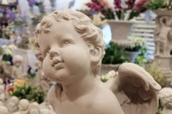 Anjo número 5446 e seu significado e simbolismo