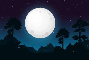 Que signo astrológico é 24 de abril?