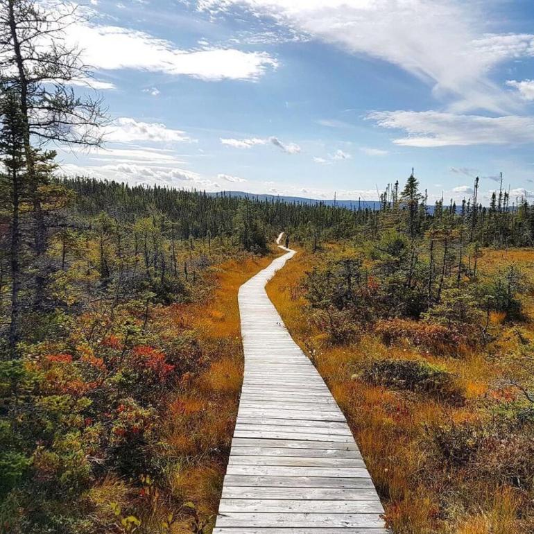 Terra Nova National Park, Canada