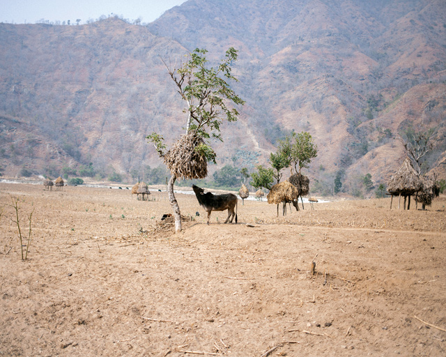 Although the Tamor is nearby, because there is no pump most villagers spend the entire day fetching water.
