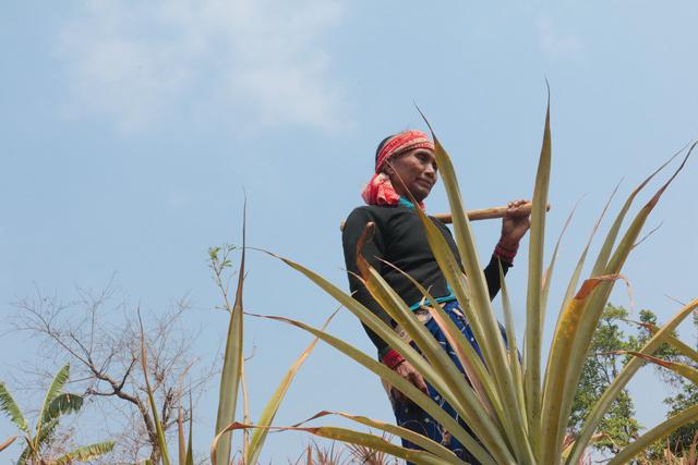 Rajkumari Chepang was poor but a landslide last year made her poorer.