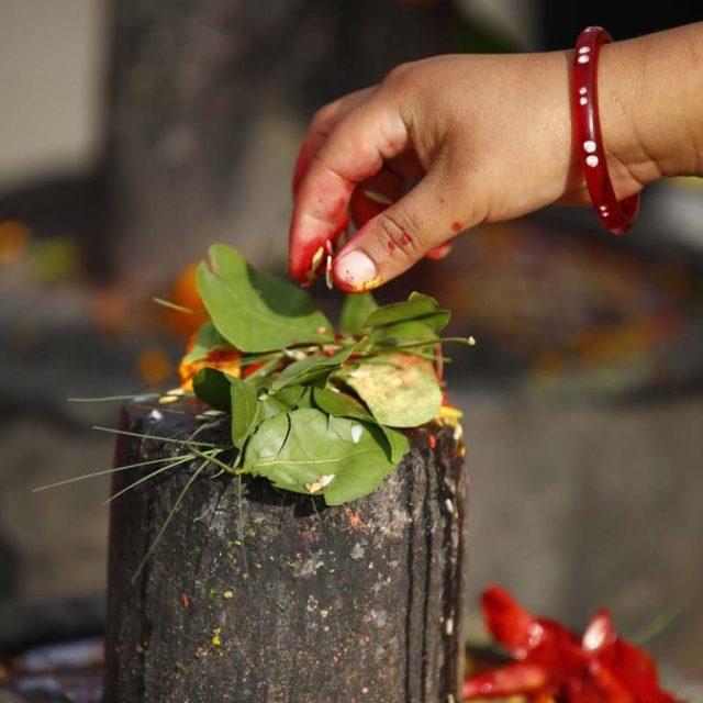 A woman offers her prayers to the shivaling of Lord Pashupatinath at the Pashupatinath Temple, in Kathmandu, on Monday, August 15, 2016. Photo: Rajesh Gurung/ THT