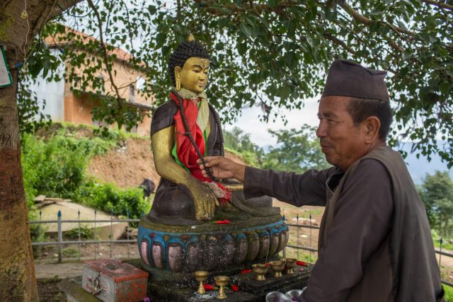 Gorash Bahadur Tamang, one of the lucky villagers who has earned large amount of money from these trees in the past four years. He believes that the trees are given to him by loard Buddha.