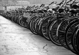 Free bicycle distribution- Glocal Khabar