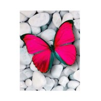 2018 Red Butterfly Prints Diamond Paintings RED In Canvas ...