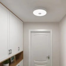 Yeelight YLXD09YL Induction LED Ceiling Light Anti-mosquito for Home ( Xiaomi Ecosysterm Product ) 1PC