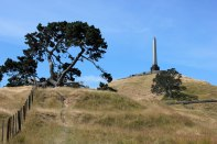 auckland_one_tree_hill_1974