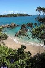 auckland_waiheke_island_2038