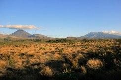 Plus très loin de Whakapapa Village