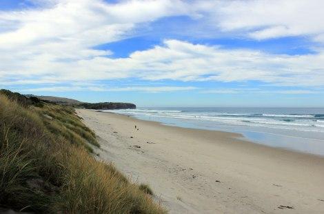 Dunedin - plage