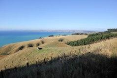 Quelque part au sud de Port Waikato