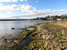 Taupo - Hot Water Beach