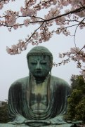 Kamakura - Daibutsu