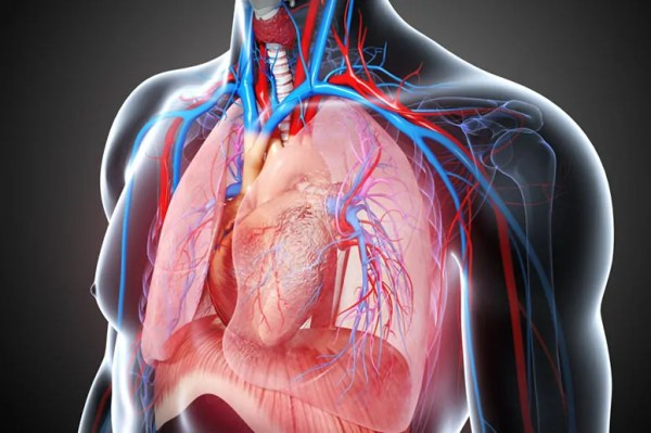 Cardio Thoracic Surgery