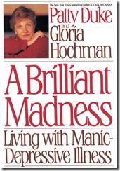 A Brilliant Madness cover