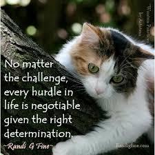 1 challenges
