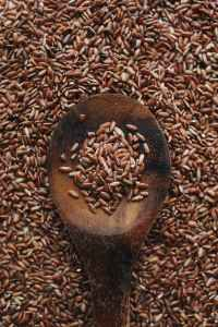 close up photo of brown rice on wooden spoon