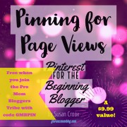 Pinning for Page Views: my Pinterest ebook! Learn how to use Pinterest to promote your blog effectively. Free when you sign up for the Pro Mom Bloggers Tribe with code GMB10.