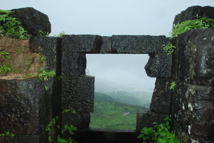 Monsoon Magic at Tikona fort