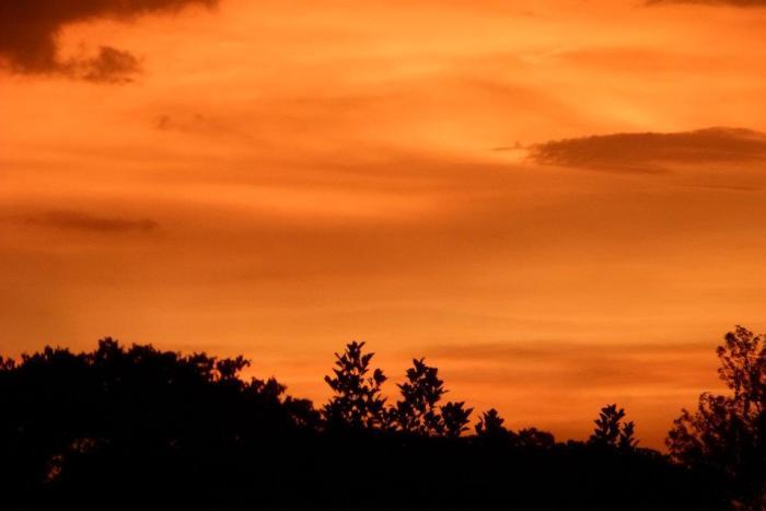 Glorious Sunrise India