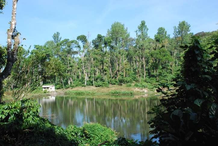 sakleshpur pond