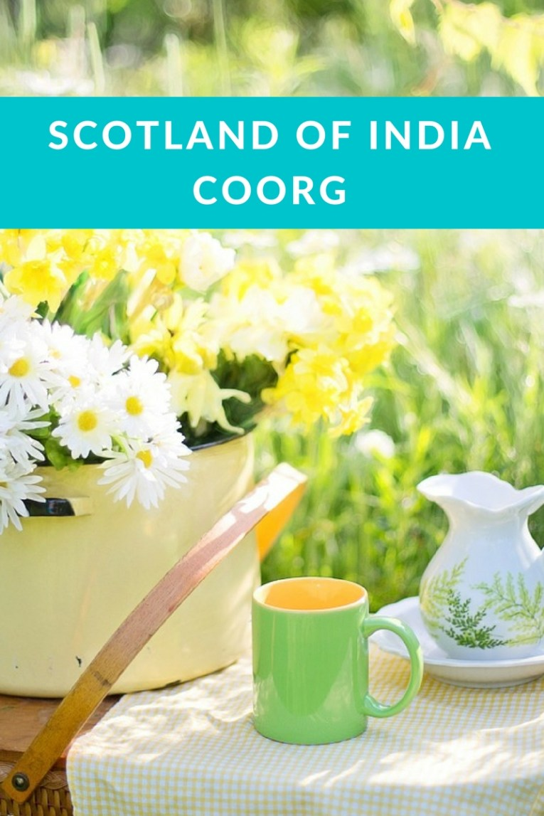 Coorg, coffee cup of India