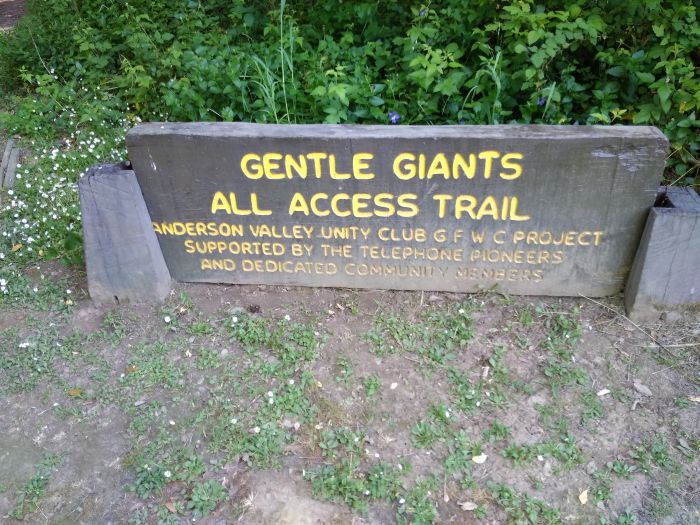 Gentle Giants Trail