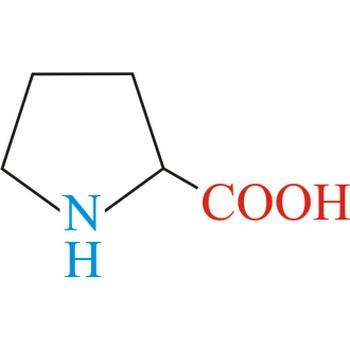 Proline @ Chemistry Dictionary & Glossary