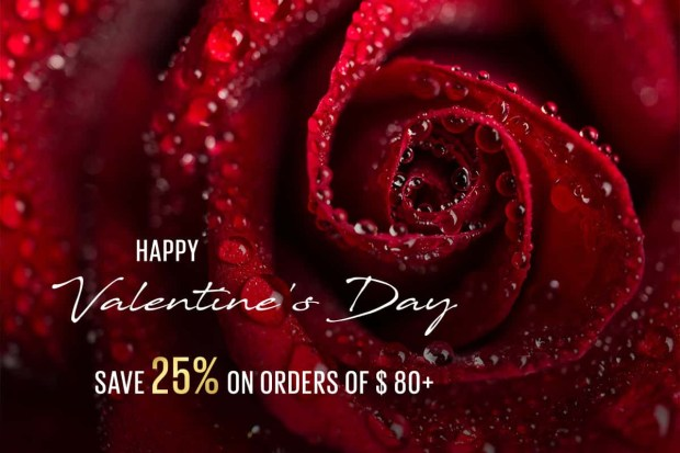 Fey Cosmetics Canada Valentine's Day Sale 25 Off Free Canadian Shipping 2020 Canadian Deals Promo Code - Glossense