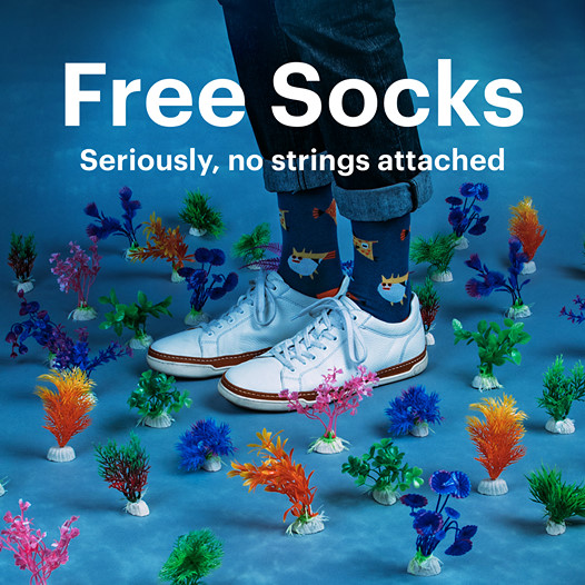 Canadian Freebies Ties com Canada Free Socks Samples - Glossense