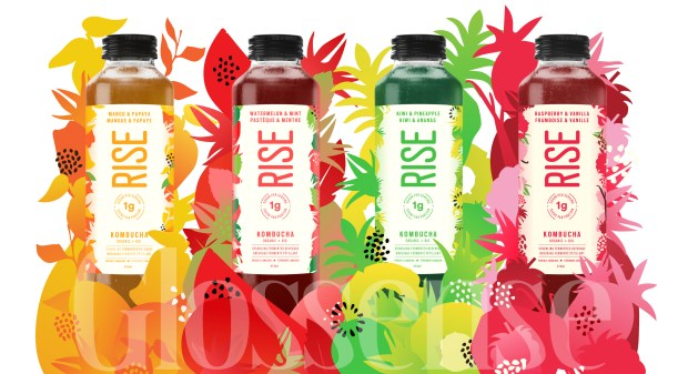 Social Nature Canada Apply to Try Review Rise Kombucha for Free Canadian Sampling Opportunity - Glossense