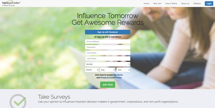 Web Perspectives Paid Surveys