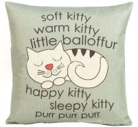 sleepy kitty big bang theory pillow