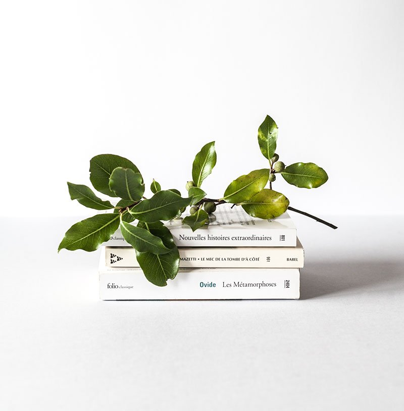 book with a leaf