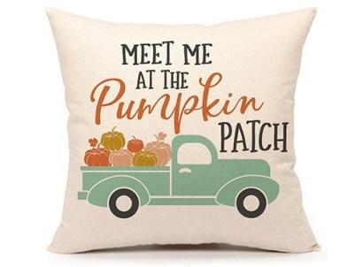meet me at the pumpkin patch pillow cover