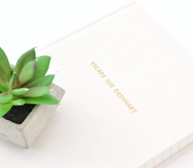 escape the ordinary notebook with plant