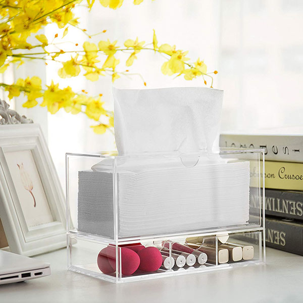 Cosmetic Organizer With Tissue Dispenser
