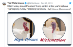"Trump Renames Pardoned Turkeys ""High Crimes & Misdemeanors"""