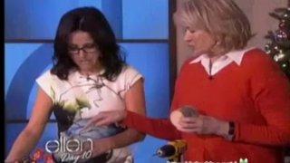 Martha Stewart's Holiday Crafts Dec 18 2013