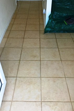 Ceramic Tiled and Grout Before Cleaning in Gloucester