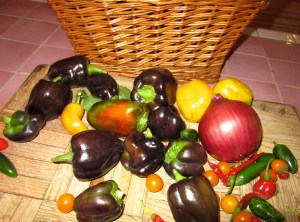 Glover Gardens is still producing a variety of chilis